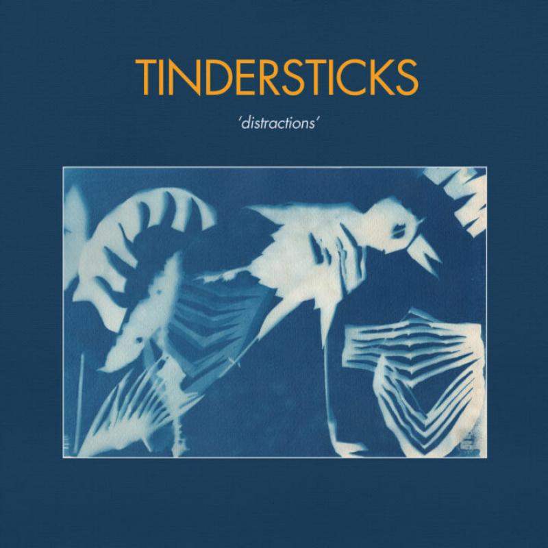 RECORD OF THE WEEK//Tindersticks – Distractions